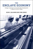 The Enclave Economy: Foreign Investment and Sustainable Development in Mexico's Silicon Valley - Urban and Industrial Environments (Hardback)