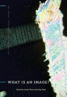 What Is an Image? - The Stone Art Theory Institutes (Paperback)