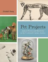 Pet Projects: Animal Fiction and Taxidermy in the Nineteenth-Century Archive - Animalibus 14 (Hardback)