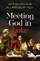 Meeting God in Luke (Paperback)