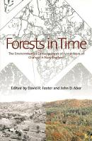 Forests in Time: The Environmental Consequences of 1,000 Years of Change in New England (Paperback)