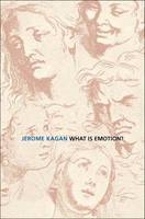 What is Emotion?: History, Measures, and Meanings (Hardback)