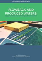 Flowback and Produced Waters: Opportunities and Challenges for Innovation: Proceedings of a Workshop (Paperback)