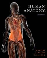 Human Anatomy: United States Edition (Hardback)