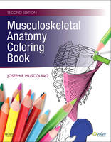 Musculoskeletal Anatomy Coloring Book (Paperback)