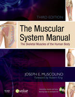 The Muscular System Manual: The Skeletal Muscles of the Human Body (Paperback)