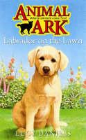Labrador on the Lawn - Animal Ark No. 51 (Paperback)