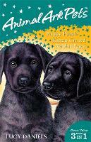 Animal Ark Pets: Animal Ark Pets Bind Up 1-3 - Animal Ark: Pets (Paperback)
