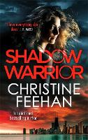 Shadow Warrior - The Shadow Series (Paperback)