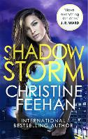Shadow Storm - The Shadow Series (Paperback)
