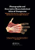 Photographic and Descriptive Musculoskeletal Atlas of Orangutans: with notes on the attachments, variations, innervations, function and synonymy and weight of the muscles (Paperback)