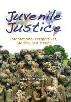 Juvenile Justice: International Perspectives, Models and Trends (Paperback)
