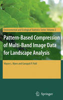 Pattern-Based Compression of Multi-Band Image Data for Landscape Analysis - Environmental and Ecological Statistics 2 (Hardback)