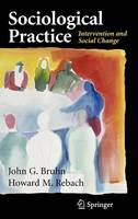 Sociological Practice: Intervention and Social Change (Hardback)