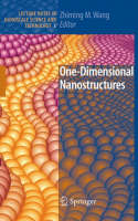 One-Dimensional Nanostructures - Lecture Notes in Nanoscale Science and Technology 3 (Hardback)