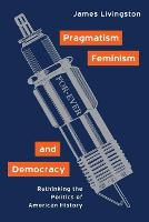 Pragmatism, Feminism, and Democracy: Rethinking the Politics of American History (Paperback)