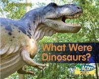 What Were Dinosaurs? - Acorn Plus: Natural Science (Hardback)