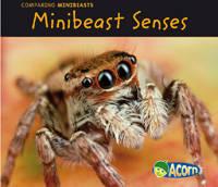 Minibeast Senses - Acorn: Comparing Minibeasts (Hardback)