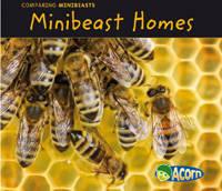 Minibeast Homes - Acorn: Comparing Minibeasts (Hardback)