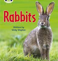 Bug Club Phonics Bug Non-fiction Set 27 Rabbits - Phonics Bug (Paperback)