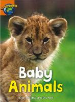 Fact World Stage 4: Baby Animals - FACTWORLD (Paperback)