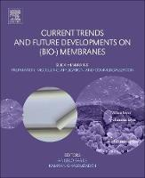 Current Trends and Future Developments on (Bio-) Membranes: Silica Membranes: Preparation, Modelling, Application, and Commercialization (Paperback)