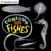 Curious About Fishes (Board book)