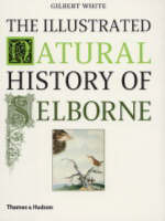 The Illustrated Natural History of Selborne (Paperback)