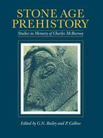 Stone Age Prehistory: Studies in Memory of Charles McBurney (Paperback)