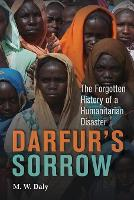 Darfur's Sorrow: The Forgotten History of a Humanitarian Disaster (Paperback)