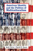 American Identity and the Politics of Multiculturalism - Cambridge Studies in Public Opinion and Political Psychology (Paperback)
