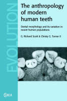 Cambridge Studies in Biological and Evolutionary Anthropology: The Anthropology of Modern Human Teeth: Dental Morphology and its Variation in Recent Human Populations Series Number 20 (Paperback)