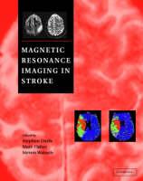 Magnetic Resonance Imaging in Stroke (Hardback)