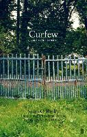 Curfew and Other Stories (Paperback)