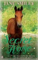Secret Horse (Paperback)