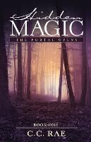 Hidden Magic: The Portal Opens - Hidden Magic 1 (Paperback)