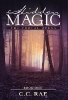 Hidden Magic: The Portal Opens - Hidden Magic 1 (Hardback)