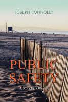 Public Safety: A Novel of 1941 (Paperback)