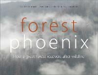Forest Phoenix: How a Great Forest Recovers After Wildfire (Paperback)