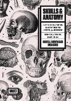 Skulls & Anatomy