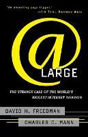 At Large: The Strange Case of the World's Biggest Internet Invasion (Paperback)