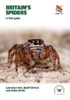 Britain's Spiders: A Field Guide - WILDGuides of Britain & Europe (Paperback)