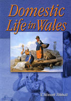 Domestic Life in Wales (Paperback)