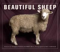 Beautiful Sheep (Paperback)