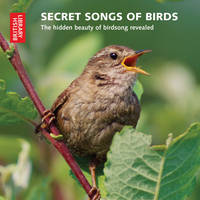 Secret Songs of Birds: The Hidden Beauty of Birdsong Revealed (CD-Audio)