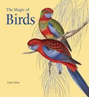 The Magic of Birds (Hardback)