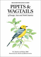 Pipits and Wagtails of Europe, Asia and North America: Identification and Systematics - Helm Identification Guides (Hardback)