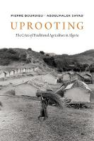 Uprooting: The Crisis of Traditional Algriculture in Algeria (Paperback)