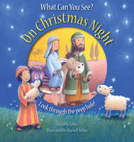 What Can You See on Christmas Night? (Paperback)
