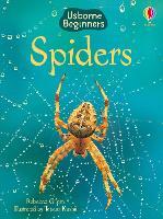 Spiders - Beginners (Hardback)